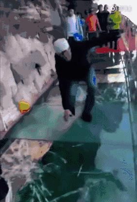 黄冈惊现会动的玻璃眺台,空中360度看花海……