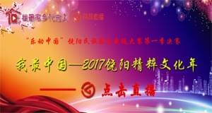 """走进饶阳文化年 让民族器乐""""乐动中国"""""""