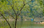 药山森林公园不仅是大氧吧,还有大鱼