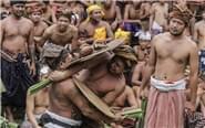 印尼部落用树叶互抽