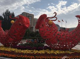 国庆长假期间—— 鲜花国旗共同点亮大美运城