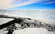 南极冰架海域的深海物种