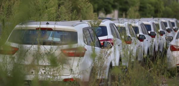 4S店库存车荒地停放 新车旁长一米高杂草