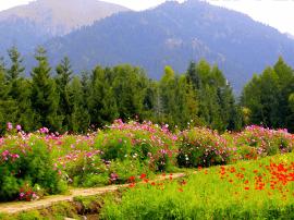 展现全景新疆风光 乌苏旅游业迈进多元格局