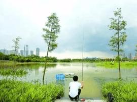 @佛山市民:水灾致周边省景点停摆 旅游受影响