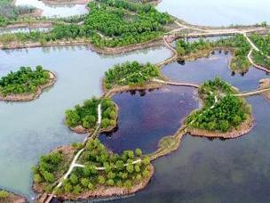 航拍济南湿地百岛湖 港汊纵横水流清
