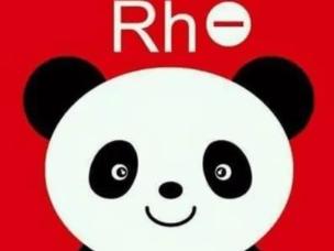 让我们一起来探秘什么是Rh阴性血