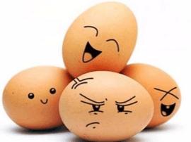 """平和:""""养鸡生蛋,精准扶贫""""项目助力脱贫"""