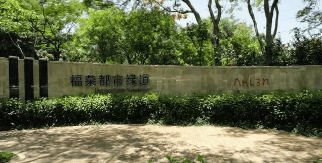 深圳各区最全绿道攻略:骑行、跑步、游玩三不误
