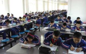 河北将严查公办学校与校外教育培训机构挂钩招生