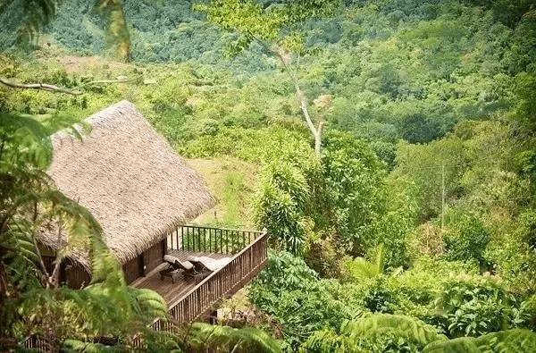 不用出国 在重庆就能睡到媲美全球的森林小木屋
