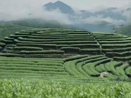 漳州东山一个旅游项目获国家旅游局重点支持
