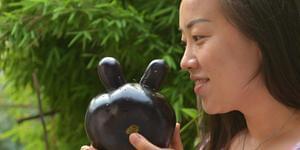 """山西:买来的茄子长了一对""""兔耳朵"""""""