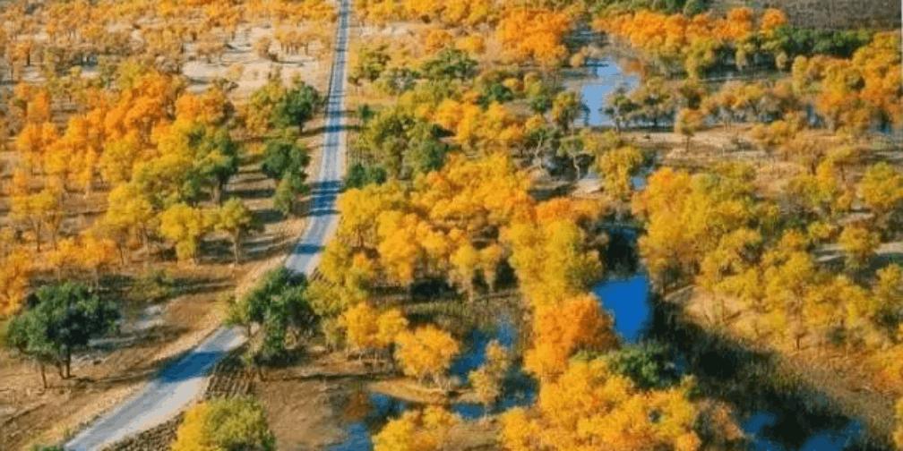 大漠深处的桃花源 堪称中国最难到达的古村落!