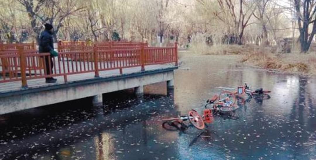 第33期:沈阳五辆共享单车被弃公园湖中