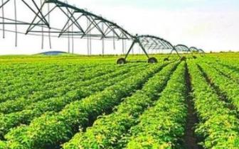 涉县农业产业化经营率达72.4% 居邯郸首位