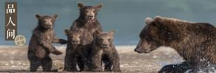 熊孩子出没?首先要有个熊父母