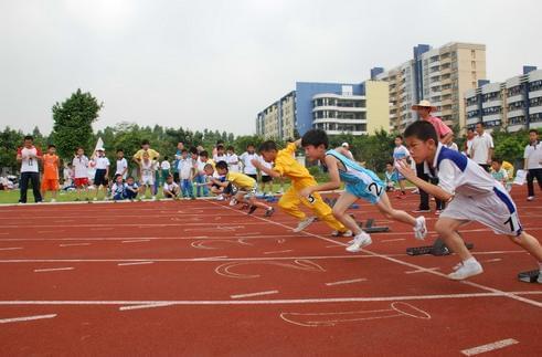 重庆各类民办学校达4455所 比2015年新增182所
