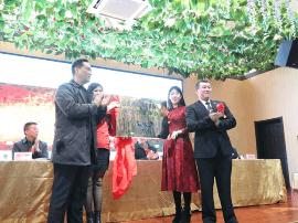 山西省健美健美操协会腕力力量举分会正式成立