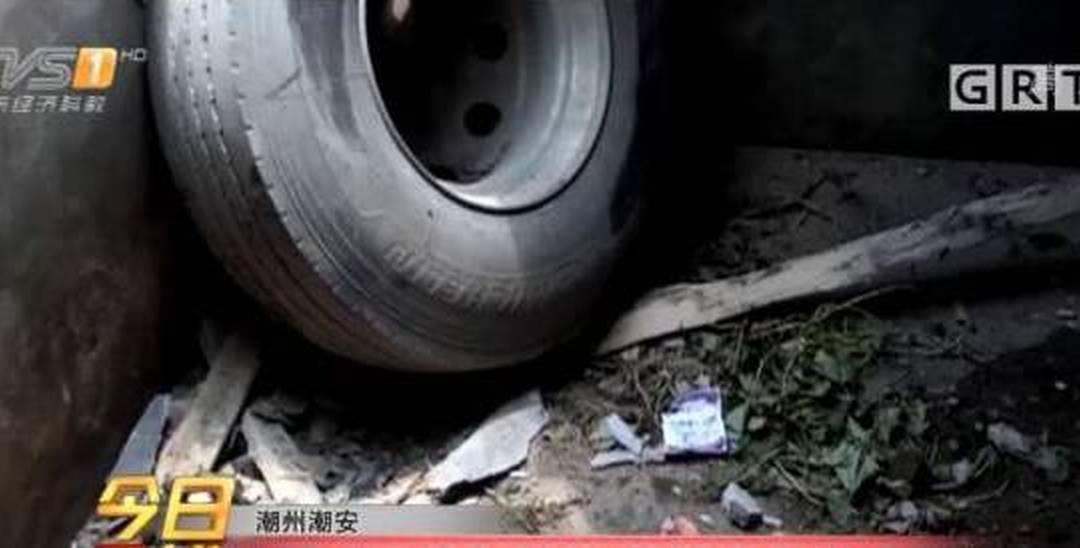 广东一猪圈天降轮胎 猪都吓傻了开始绝食