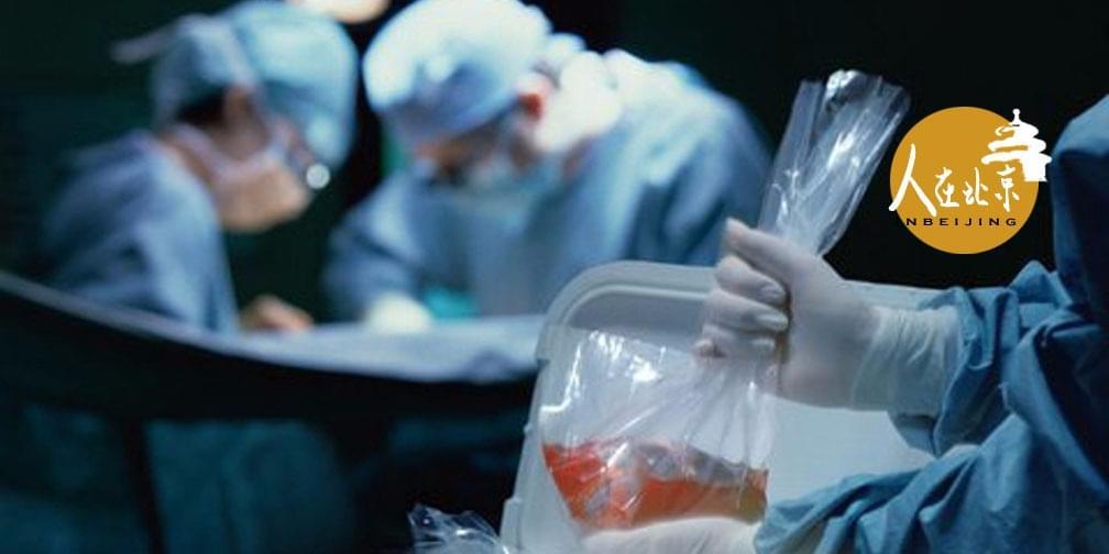 器官捐献:生与死之间有一场对话