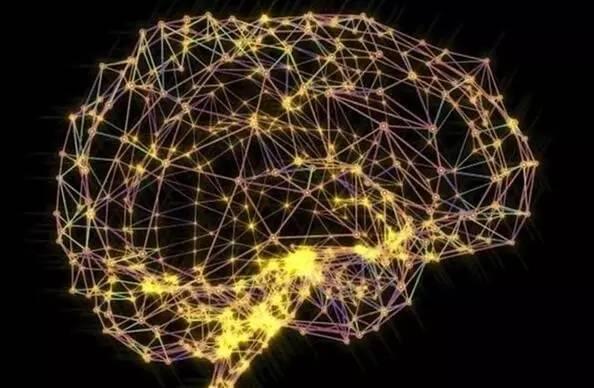 AI伦理无法回避的5个问题:生物进化是否有方向?