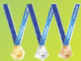 第十三届全运会河北代表团奖牌榜单