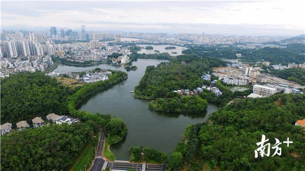 """惠州""""美丽山水城市""""怎样炼成?这篇文章告诉你!"""