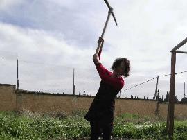 【援非日记】之九:异国他乡开荒种菜 医生变身一群快乐的农夫