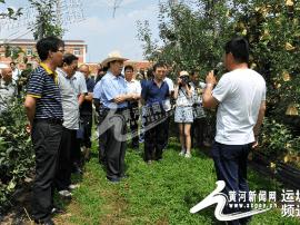 运城市果业发展中心组织科技人员赴渭南进行观摩学习