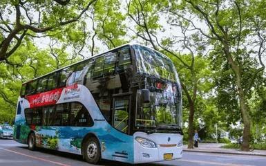 西湖到红花湖坐公交车可直达 发车间隔10分钟/班