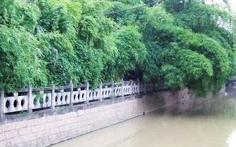 福州内河驳岸有了统一建设标准 将按4种形式打造