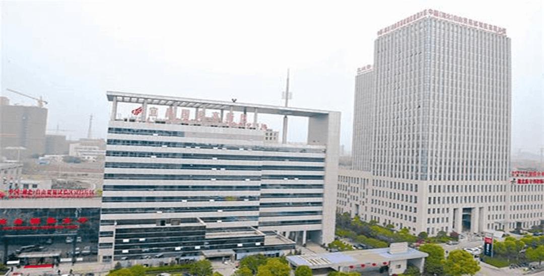 中国(湖北)自贸试验区 宜昌片区今日挂牌