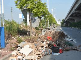 顺德人民注意啦!公共道路乱扔垃圾,小心遭惩罚!