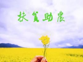湛江东盟农博会首设精准扶贫产品展区