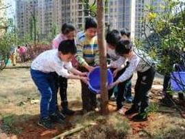 护绿学雷锋孩子们在行动 青岛小学生给浮山添绿色