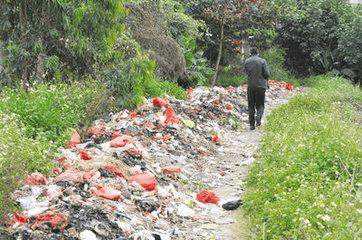 """破解""""垃圾围村"""",惠州这些地方都是这么干的!"""