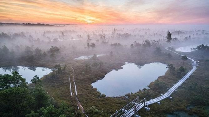 宛若仙境的拉脱维亚沼泽