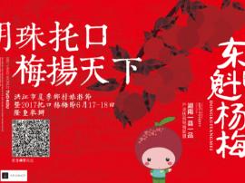 """""""明珠托口梅扬天下""""2017洪江杨梅节6月17日开幕"""