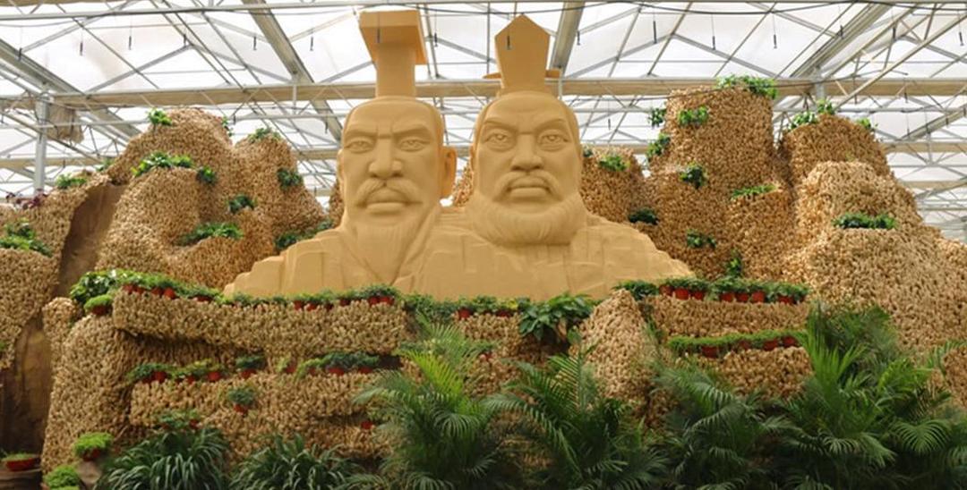 """安阳万斤生姜堆砌多娇""""姜山"""""""