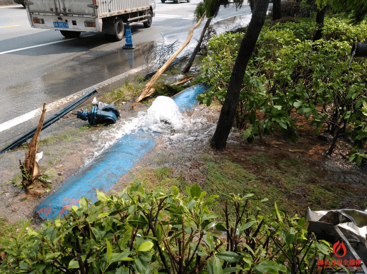 货车撞路边致水管爆裂 南海桂丹路车龙大摆两小时