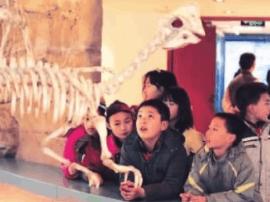 北京市教委:深化基础教育改革硕果累累