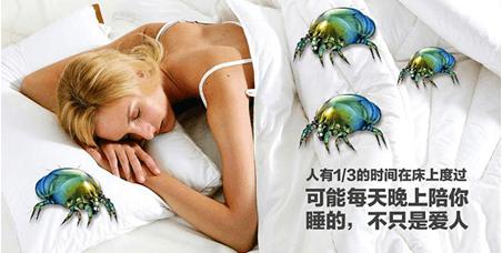 大咖帮帮忙|600万螨虫陪你睡是谣言吗?如何打造健康睡眠空间