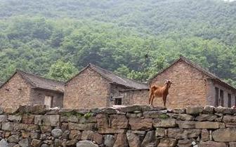 2017年末我国农村 贫困人口减少到3046万人