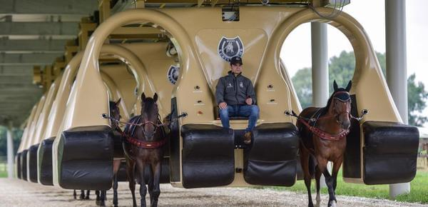 1.7亿元驯马黑科技面世 无需骑师就可驯马