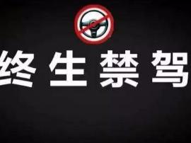 曝光!这17名荆州司机被终生禁驾……