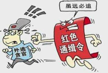 红通人员李宝华回国投案自首  2014年5月外逃美国