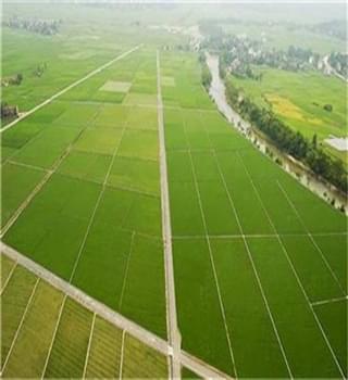 洛阳市将集中整治土地利用管理问题