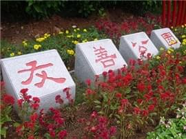 道滘:友善公园投入使用 成街头靓丽风景线