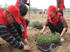 运城志愿者为特殊教育学生建爱心菜园